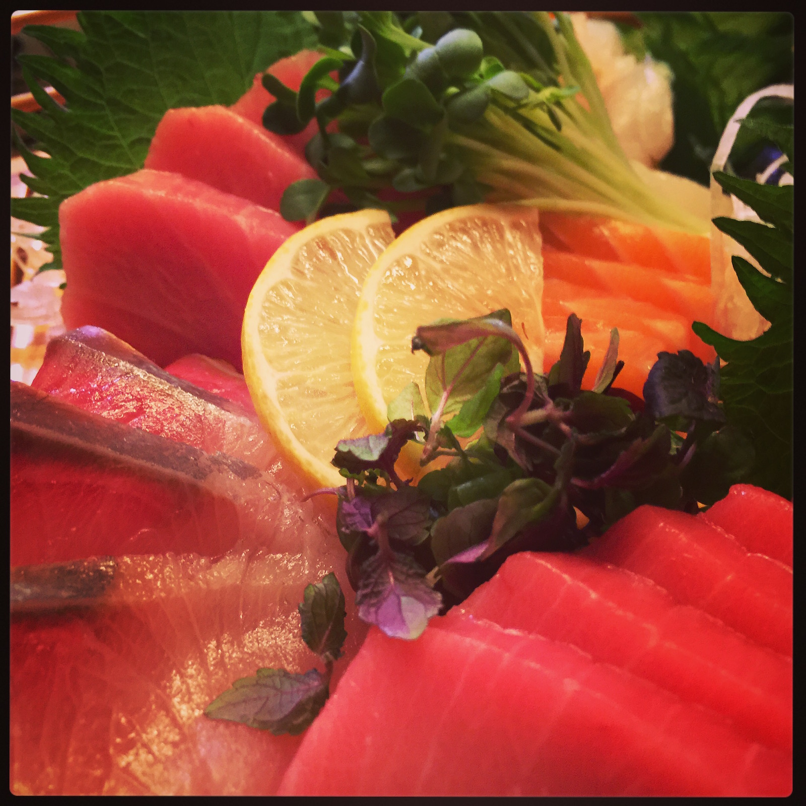 Matsumi - sake, fatty tuna, hamachi sashimi