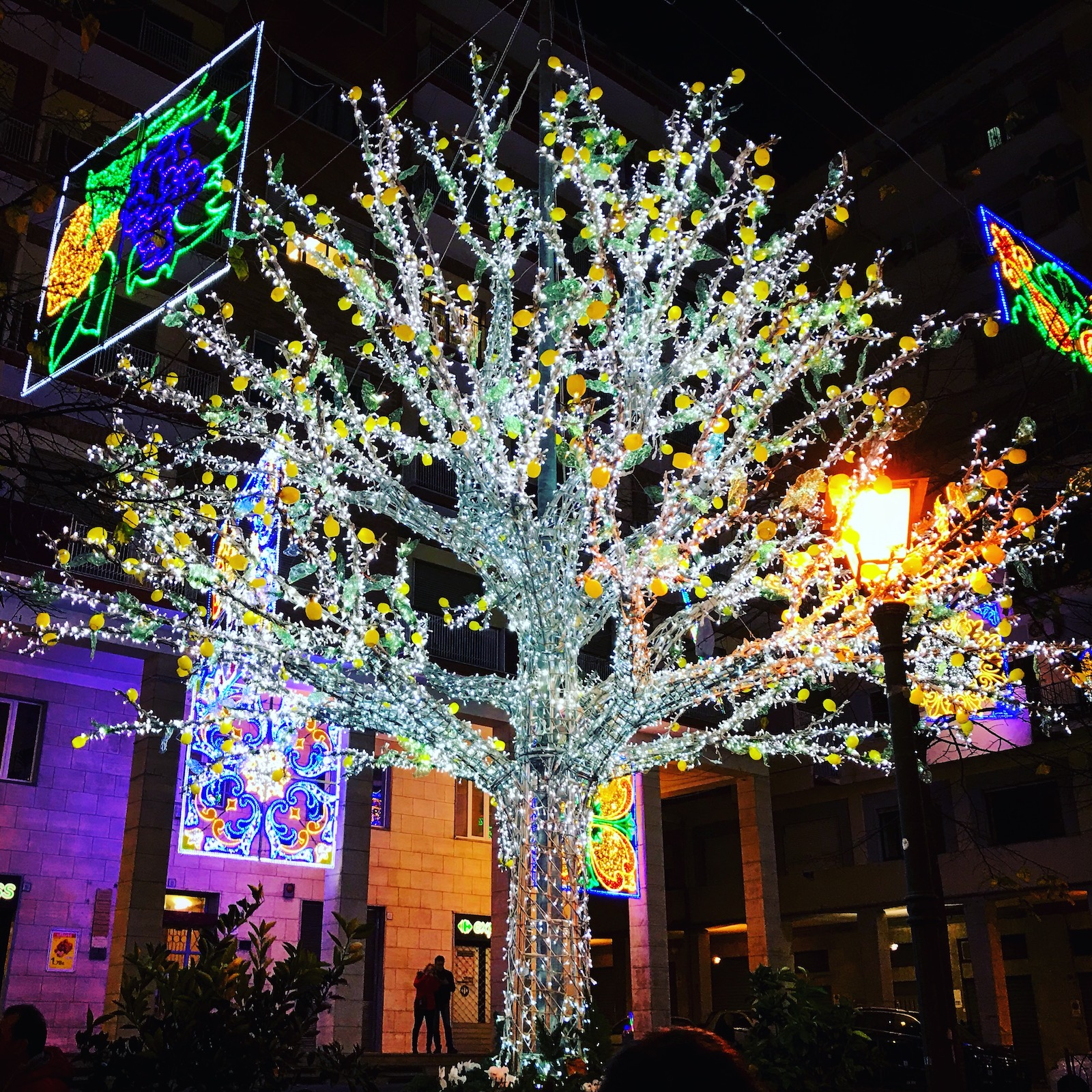 Christmas in Salerno - trees